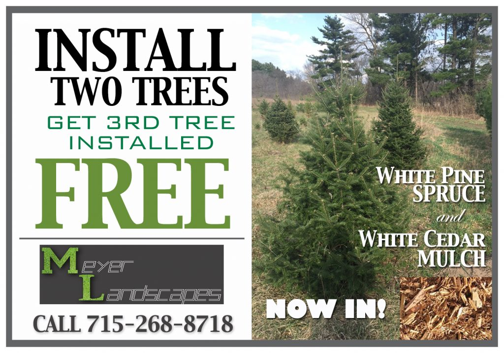 meyer-special-3rd-tree-install-free